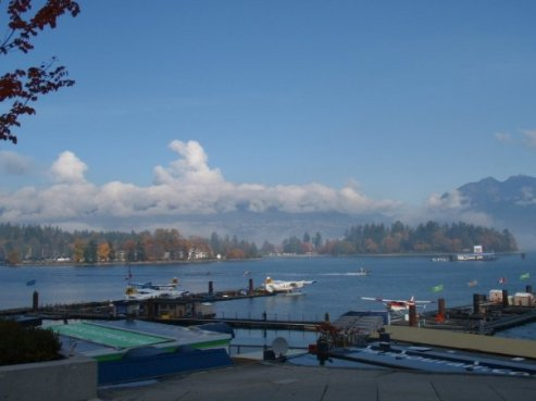 Looking at Stanley Park