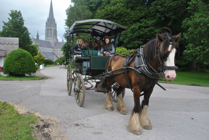 Our horse-drawn carriage in Killarney