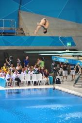 Men's 3m Springboard Diving