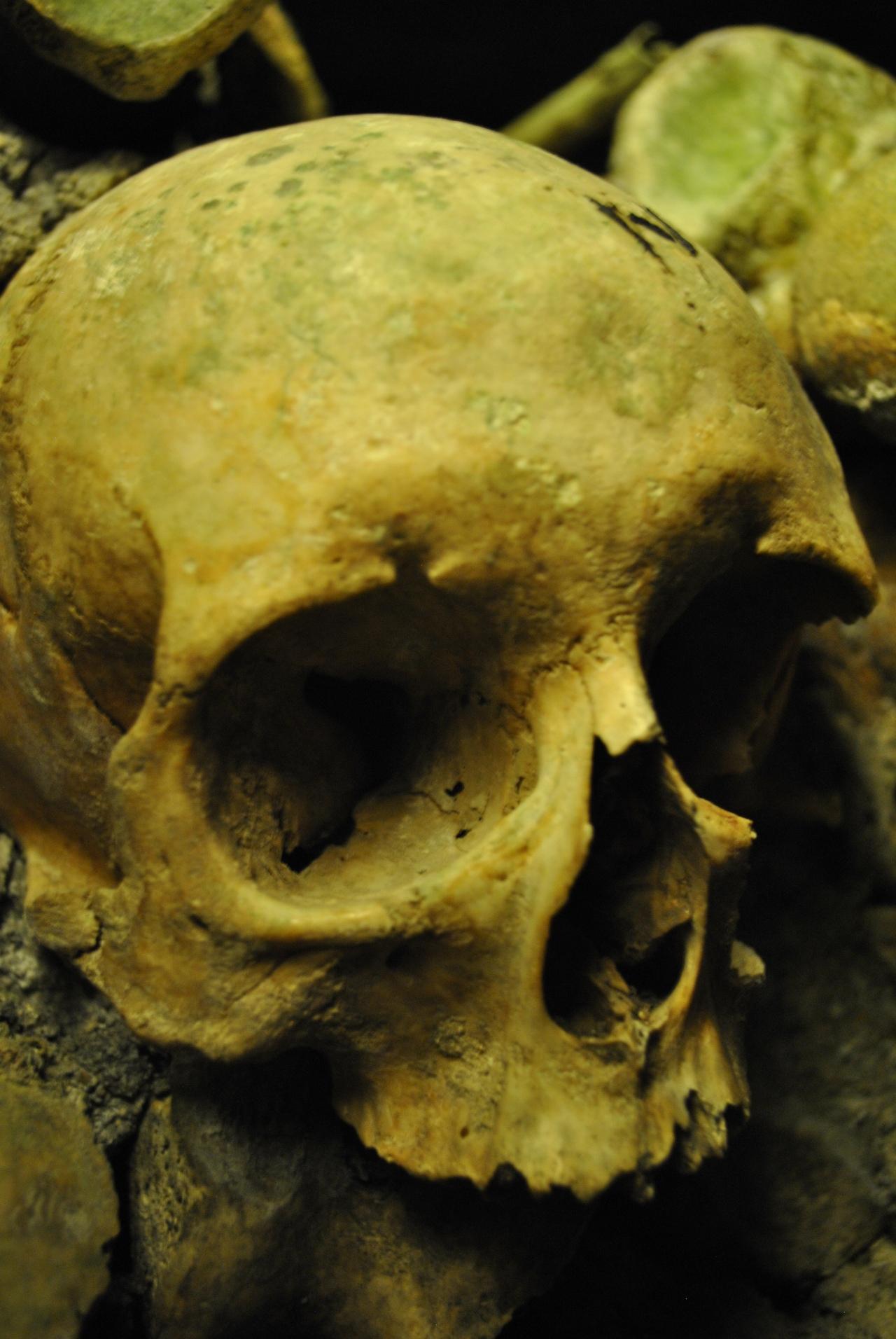The Catacombs ofParis