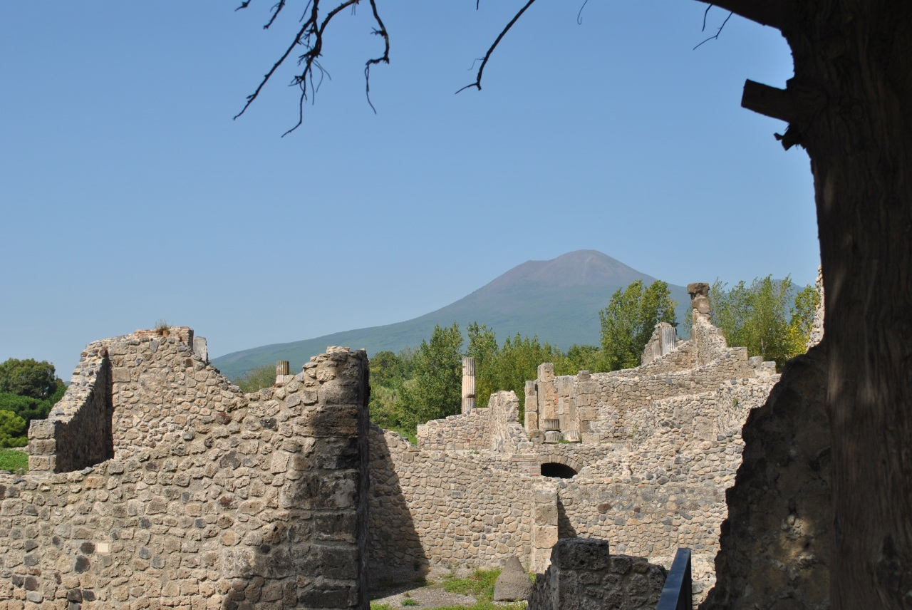 In the Shadow ofVesuvius