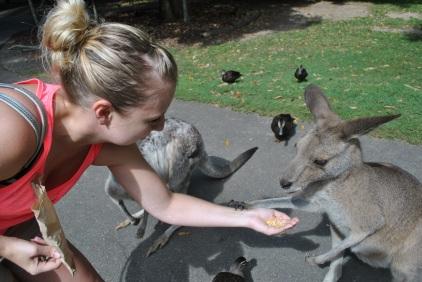 Feeding Handsy
